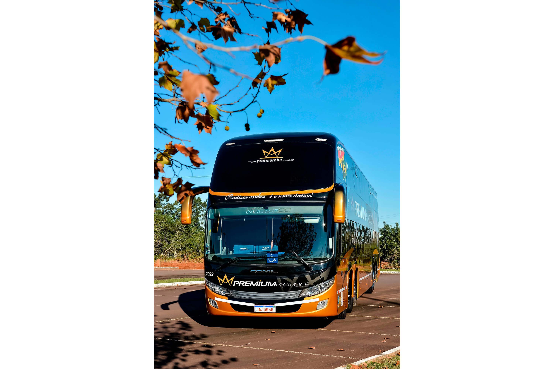 Ônibus 2022 - Foto 6